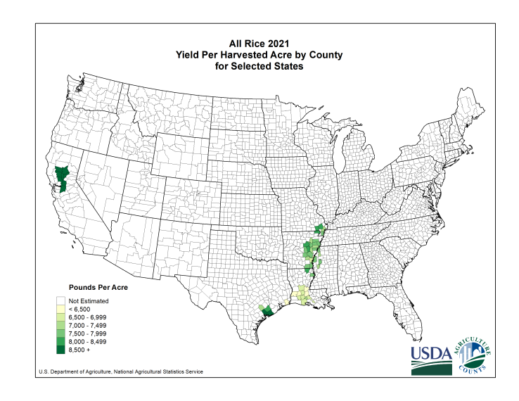 Rice: Yield per Harvested Acre by County