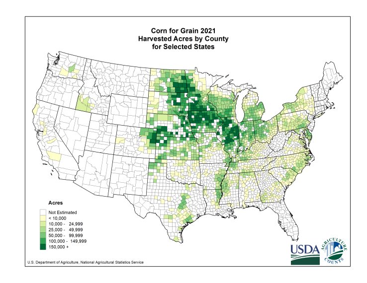 Corn: Harvested Acreage by County
