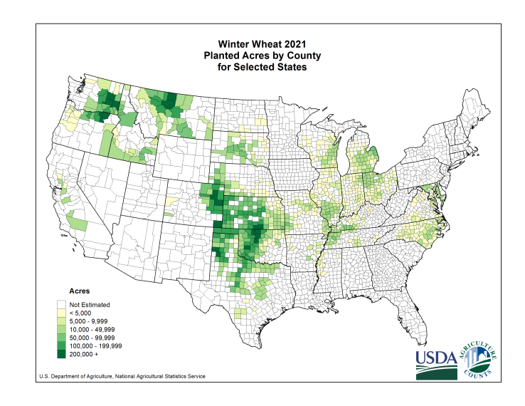 Winter Wheat: Planted Acreage by County