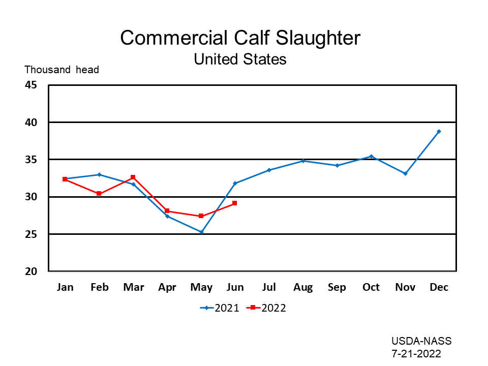 Commercial Calves Slaughter
