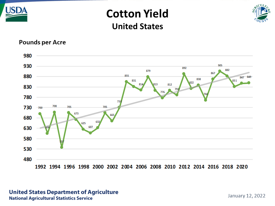 Cotton: Yield by Year