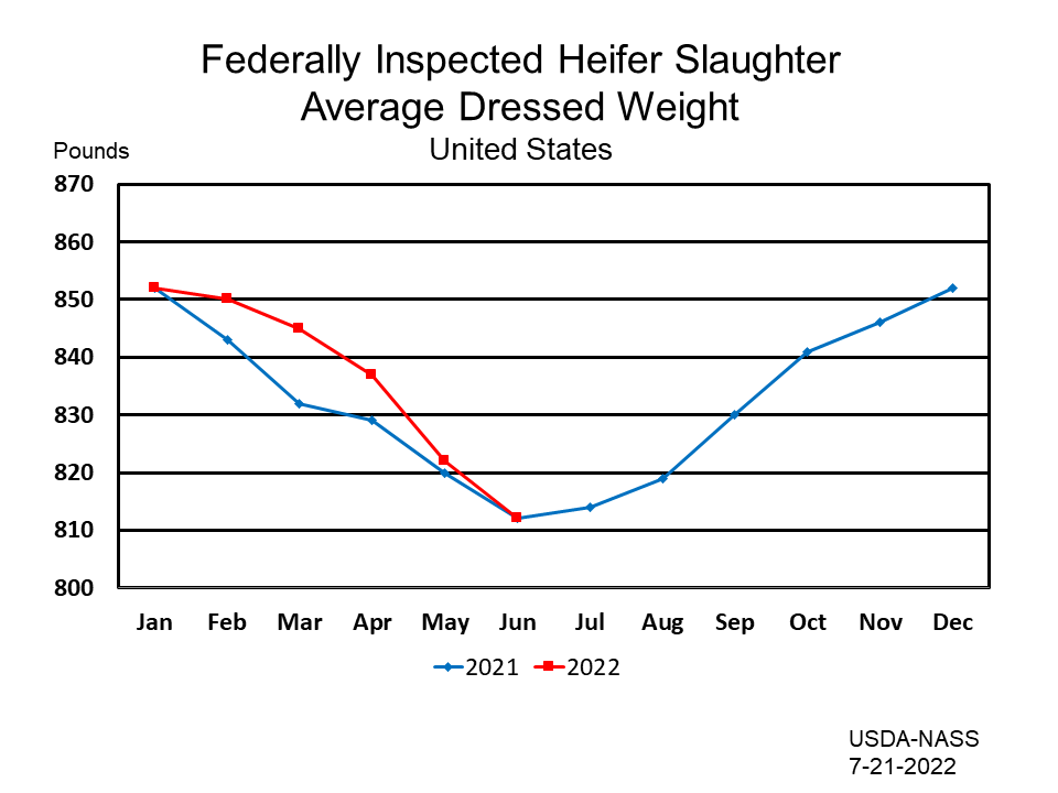 Federally Inspected Heifer Slaughter