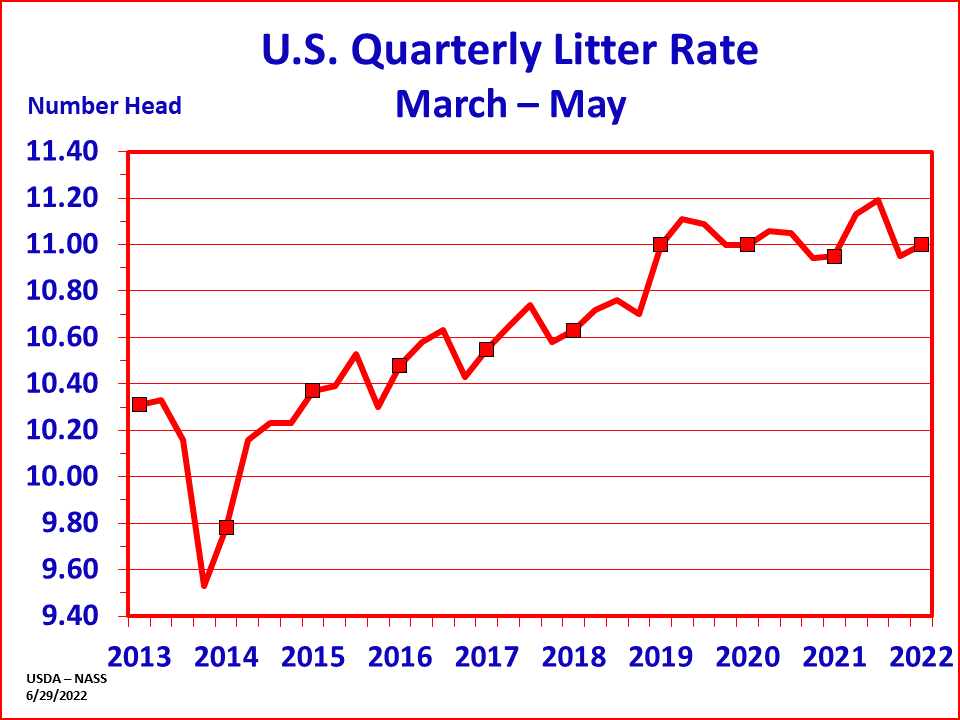 Hogs: Litter Rate by Quarter and Year, US