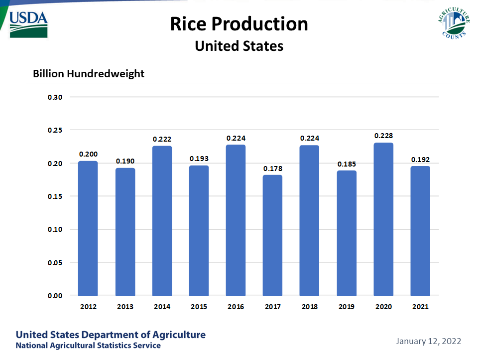 Rice - Production by Year, US