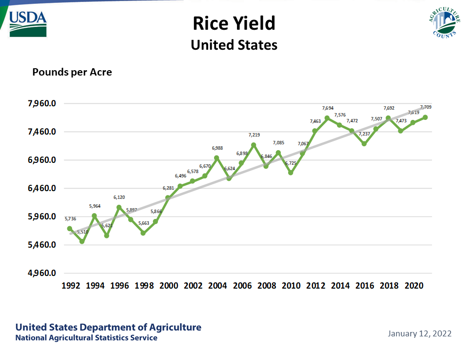 Rice - Yield by Year, US