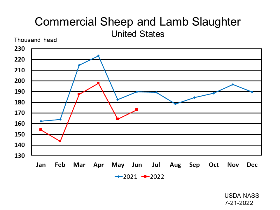 Commercial Sheep and Lamb Slaughter