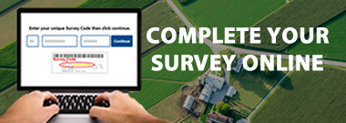 Complete your survey online.