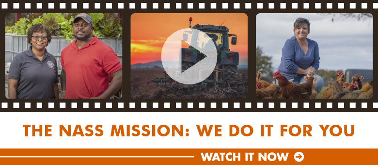 Video of The NASS Mission: We do it for you.