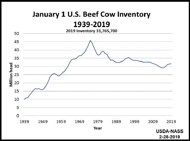 Beef Cows: Inventory on January 1 by Year, US