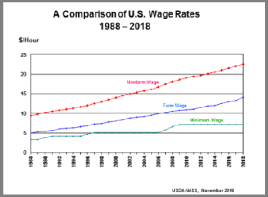 Farm Labor: Wage Rate by Type by Year, US
