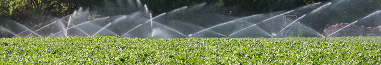 Irrigation Organizations Survey